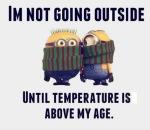 cold minions